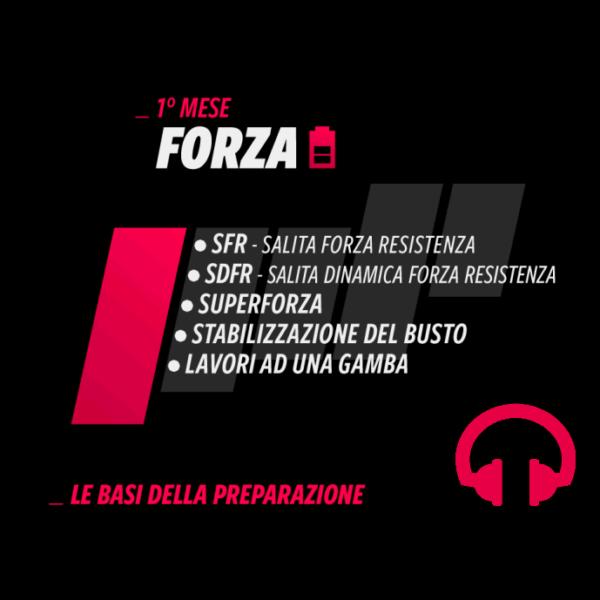 04_MP_FORZA