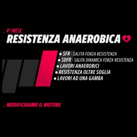 Resistenza anerobica